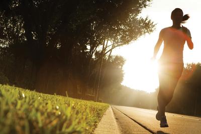 Fitness Australia Annual Report 2012 -13